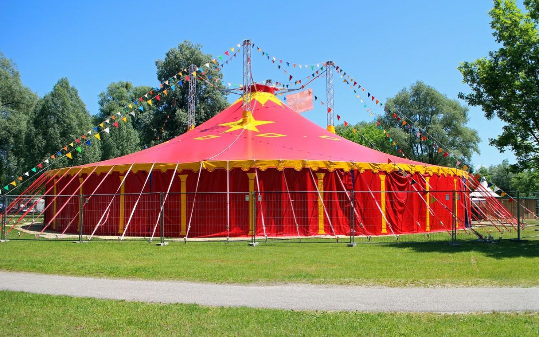 This Circus Act Goes On…